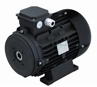 Двигатель 9,2 кВт H132L полый вал d 24 мм с напольной установкой