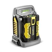 Зарядное устройство BC Adv, 220-240V 28521820